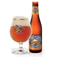 Bière Queue de charrue Ambrée (6° - 33cl)